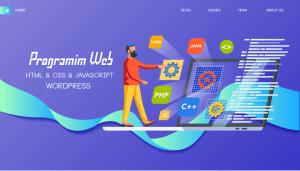 Trajnim Programim Web